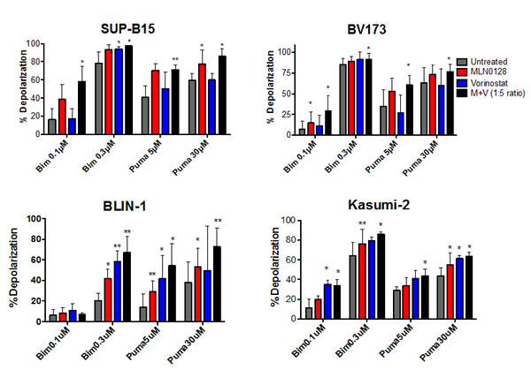 BH3 profiling assay shows increased mitochondrial priming in B-ALL cells treated with MLN0128/vorinostat.