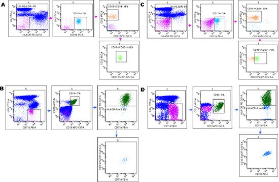 Flow cytometry analysis of Granulocytic (G-MDSc LIN-/HLA-DR−/ CD11b+/ CD14−/CD15+/CD33+) and Monocytic (M-MDSc CD14+/HLADR−/low/CD11b+CD33+).