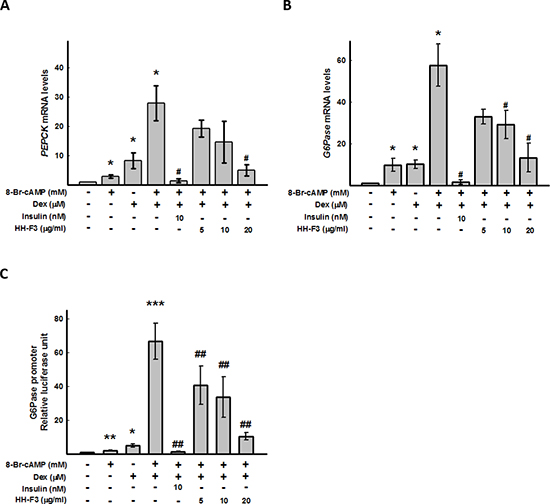 HH-F3 suppresses 8-bromo-cAMP/dexamethasone-induced gluconeogenic enzymesG6Pase and PEPCK gene expression, and G6Pase promoter activity.