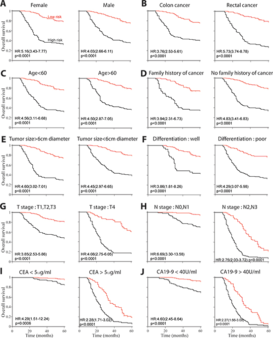 Kaplan-Meier survival analysis for all 526 patients according to autophagic-protein-based classifier stratified by clinical and pathological characteristics.