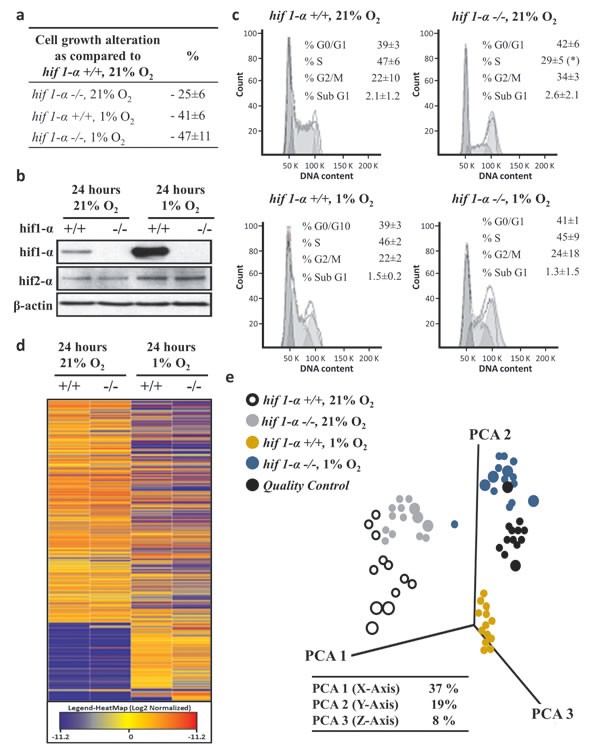 Hypoxia-dependent lipophilic molecular features phenotype of HCT116 colorectal cancer cells.
