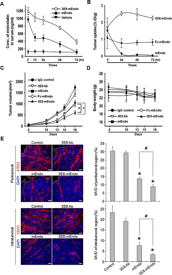 Anti-tumor effects of the 3E8-mEndo fusion protein.