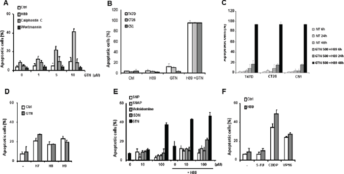 Characterization of SW480 cell sensitization to apoptosis by H89.