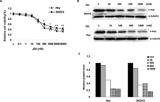 JQ1 significantly suppressed growth and inhibited c-Myc expression in human ovarian cancer cell lines.