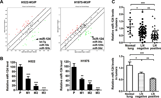 miR-124 is down-regulated in aggressive NSCLC cells.
