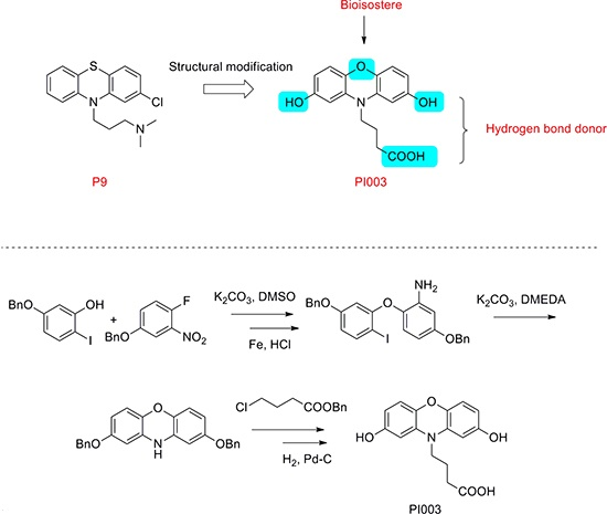 Chemical structure modification strategies of PI003.