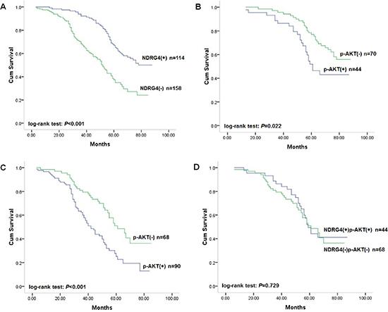 Kaplan-Meier survival curves of patients in the retrospective study cohort.
