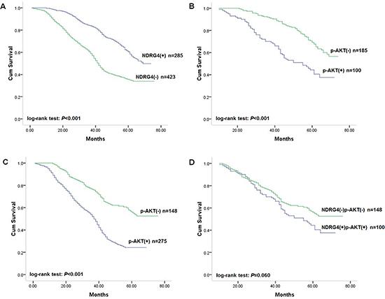 Kaplan-Meier survival curves of patients in the prospective study cohort.