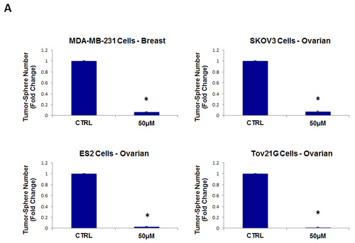 Tigecycline inhibits tumor-sphere formation in eight other cell lines, derived from diverse cancer types.