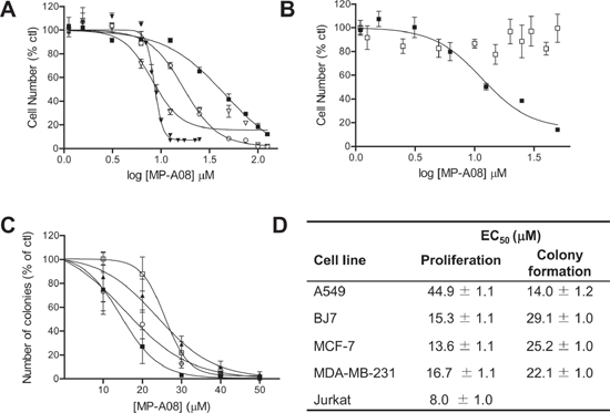 MP-A08 inhibits neoplastic growth of human cancer cells in vitro.