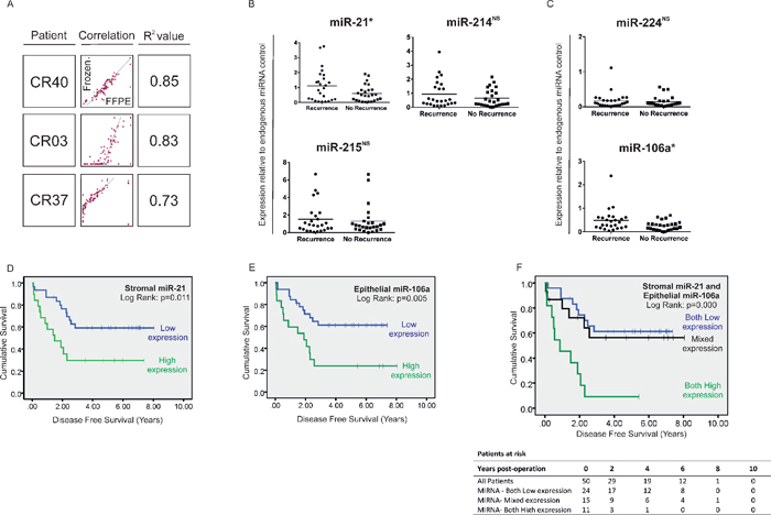 (A) Correlation between the expression status of 95 cancer relevant miRNAs in fresh-frozen and FFPE tissue by QuantimiR™-qPCR, from 3 CRC specimens chosen at random from our archive.