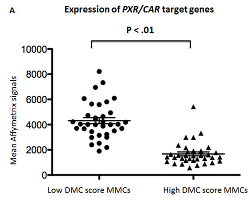 Expression of the target genes driven by