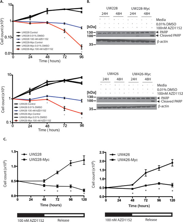 Sensitization of Myc overexpressing medulloblastoma cells to cell death and impaired cell proliferation in response to Aurora B inhibition.