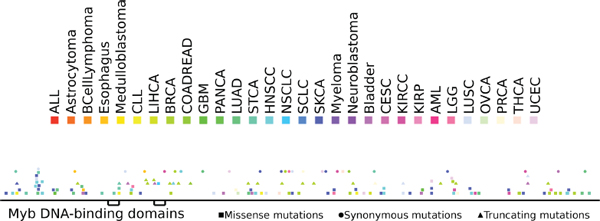 Distribution of somatic mutations along the sequence of the NCoR protein.