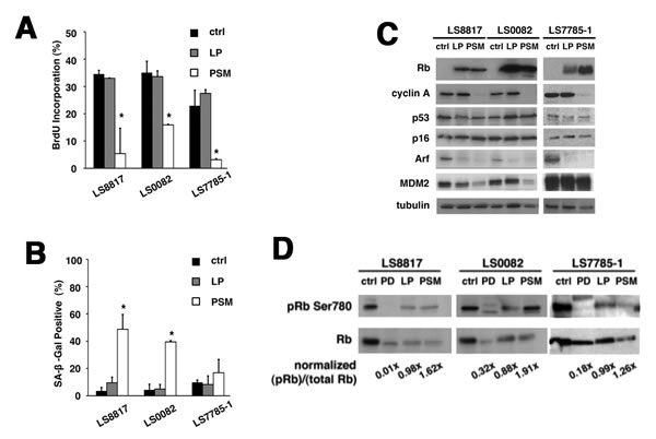 Accumulation of unphosphorylated Rb is sufficient to recapitulate the effect of CDK4 inhibition.