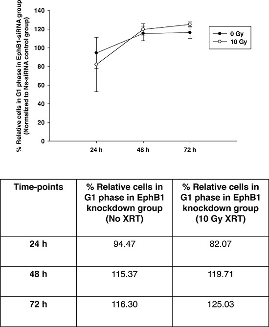 Knockdown of EphB1 receptor enhances the percentage of cells in G1 phase in irradiated DAOY cells.