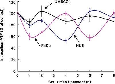 Oscillation in intracellular ATP levels after cetuximab treatment in different HNSCC cell lines.