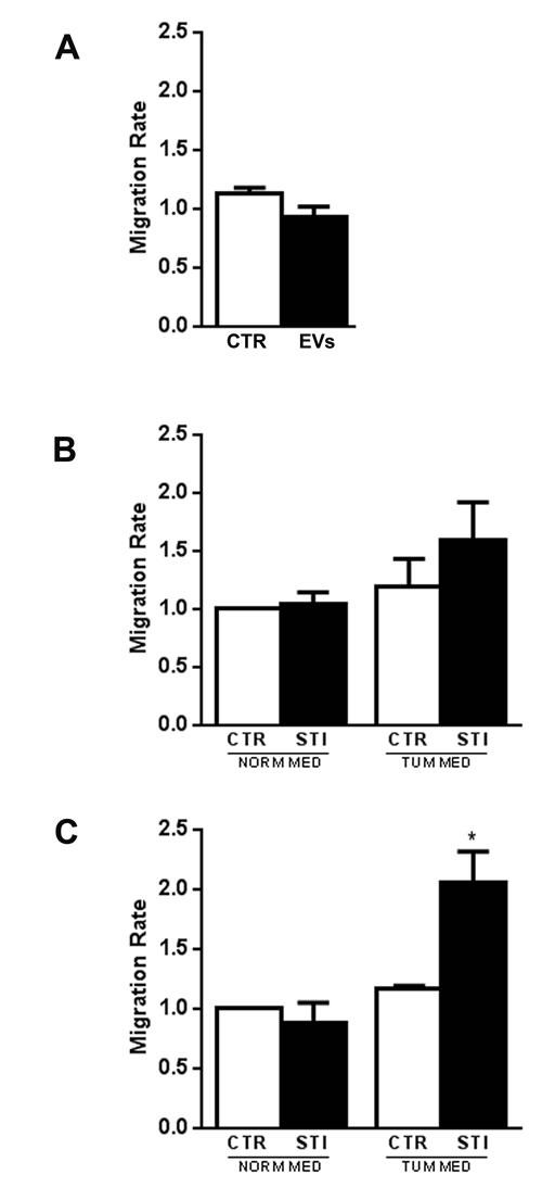 MSC migration after CSC-EV stimulation.