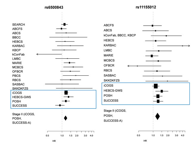 Forest plots depicting study-wise hazard ratios for the statistically significant SNPs detected in Stage II.