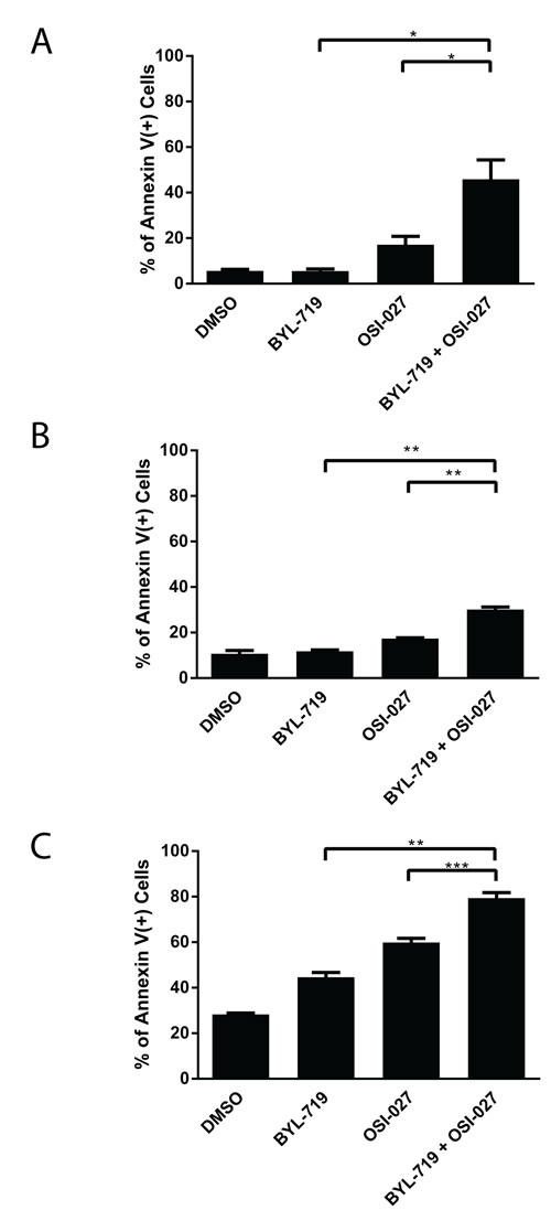 The combination of BYL-719 and OSI-027 results in enhanced induction of apoptosis in AML cell lines.