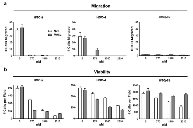 Reagents that target PDPN can decrease OSCC cell migration and viability.