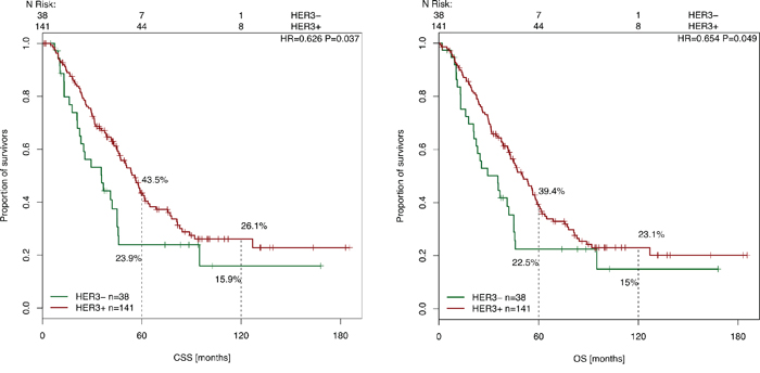 Cancer-specific and overall survival after liver surgery in correlation with HER-3 expression.