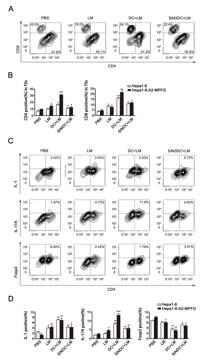 Fig. 6: Combination therapy increases the number of Th17 cells within the tumor.