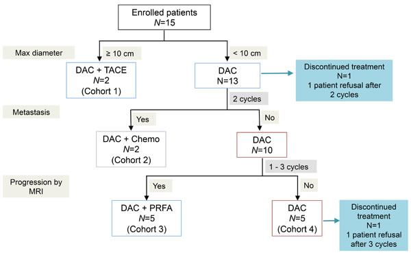Protocol for lower-dose decitabine based therapy in patients with advanced HCCs.