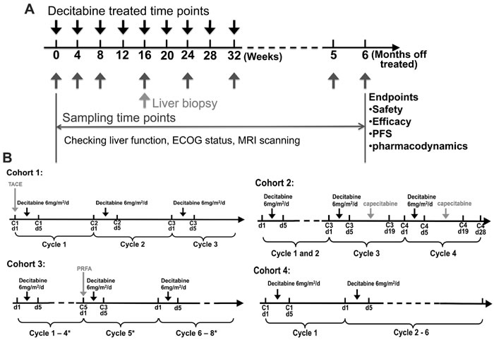 Study design of lower-dose decitabine based therapy.