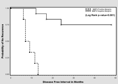 Kaplan-Meier curves showing probability of no recurrence based on MMP-9 status at surgical margins.