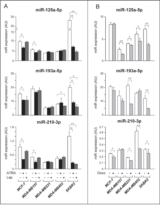 Expression of selected Module-2 miRs in breast cancer cell lines challenged with ATRA, Lapatinib and Doxorubicin.