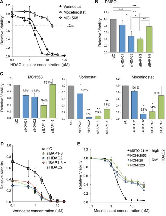 BAP1 status alters sensitivity of mesothelioma cells to HDAC inhibitors.