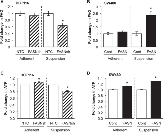 FASN overexpression significantly increases dependence of CRC cells on FAO in matrix-detached conditions.