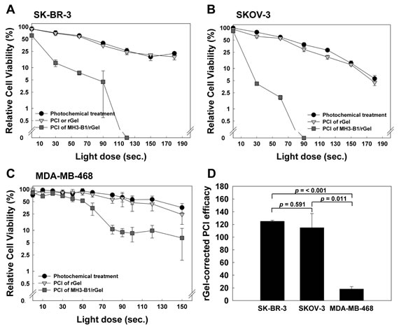 PCI efficacy of MH3-B1/rGel in SK-BR-3 and SKOV-3 cells.