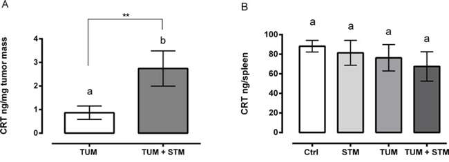 STM treatment induces a release of CRT in mice at 30 days PTI.