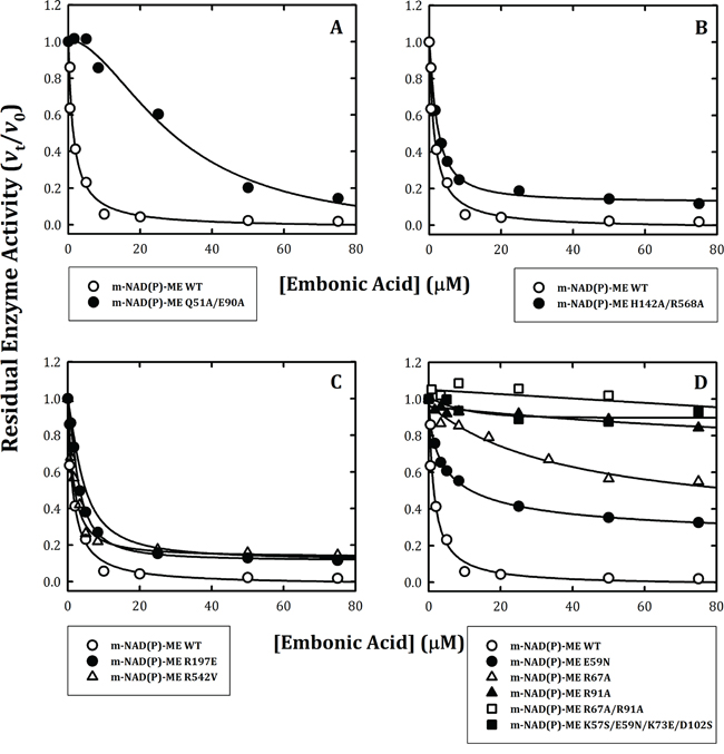 Inhibitory effects of embonic acid (EA) on wild-type and mutant m-NAD(P)-ME.