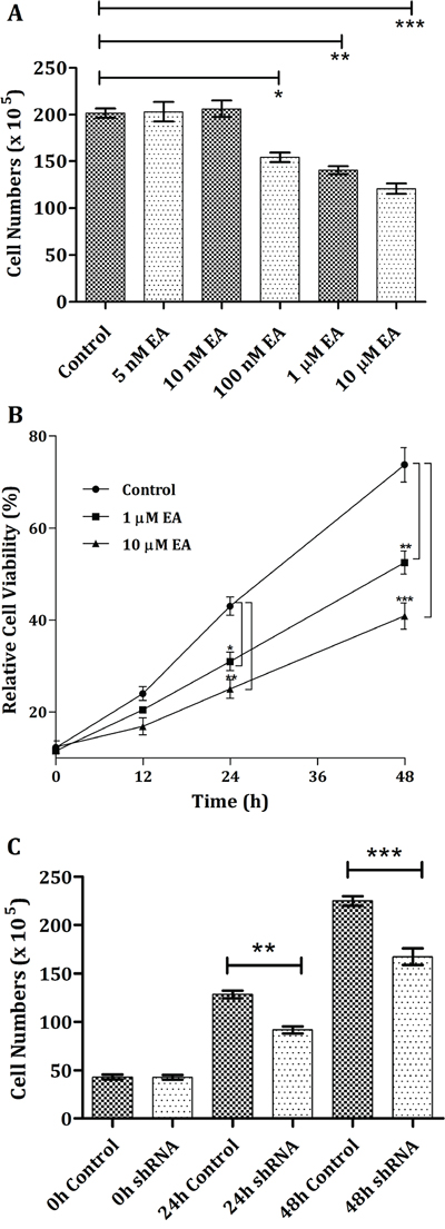Cell growth inhibition of H1299 cancer cells through the addition of embonic acid (EA).
