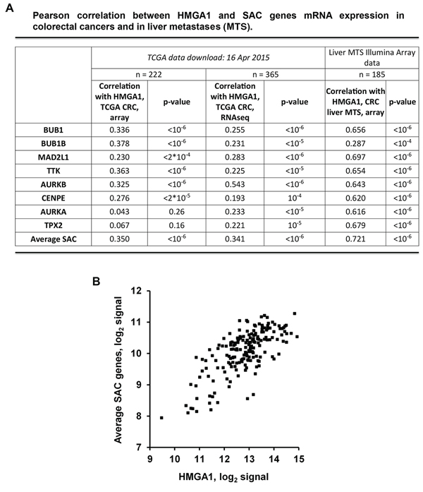 HMGA1 and SAC genes expression correlates in colorectal cancer samples and in liver metastases.