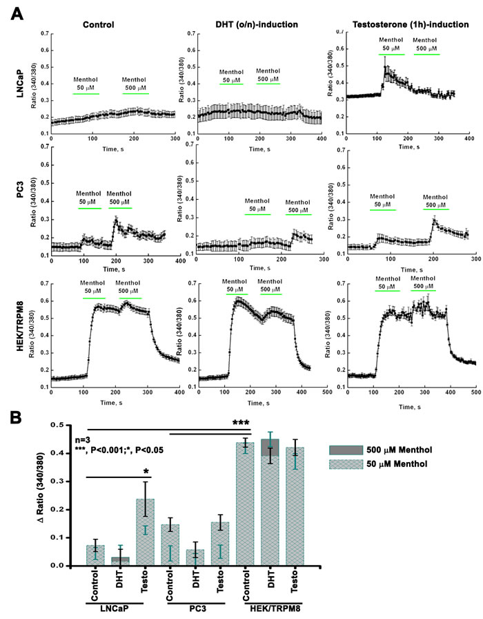 TRPM8 activity by intracellular Ca