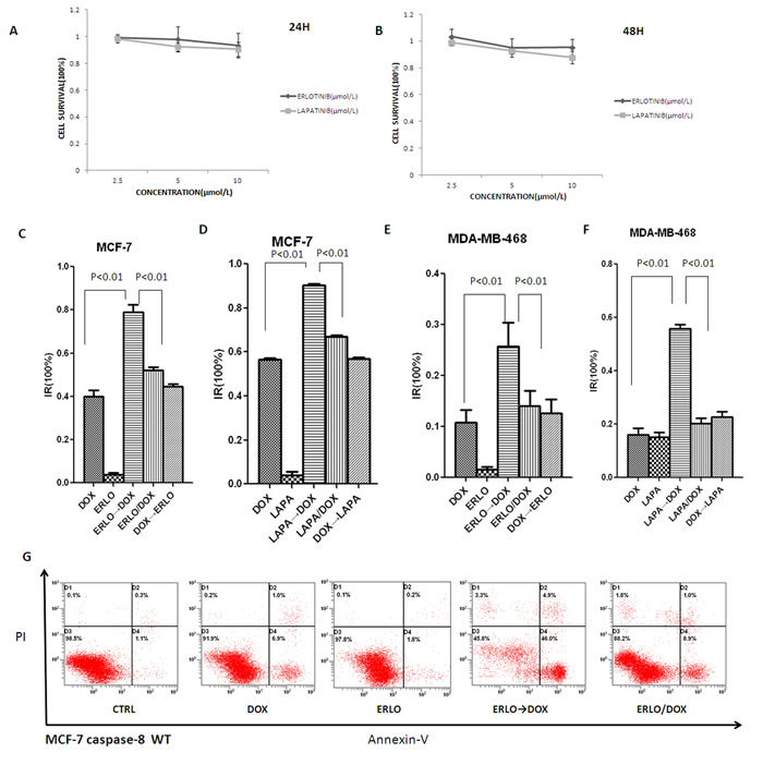 Sequential scheduling of EGFR inhibitors with doxorubicin in breast cancer cells.