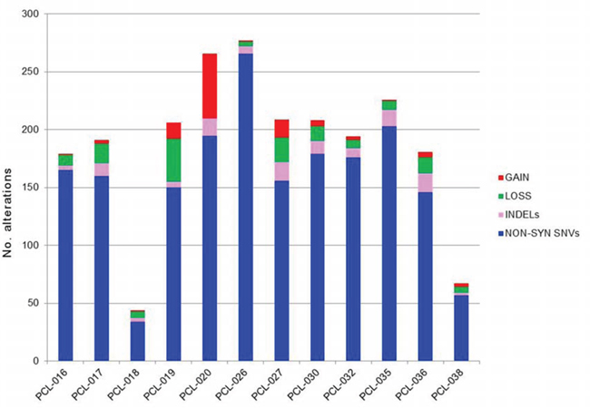Global amount of somatic alterations per sample.