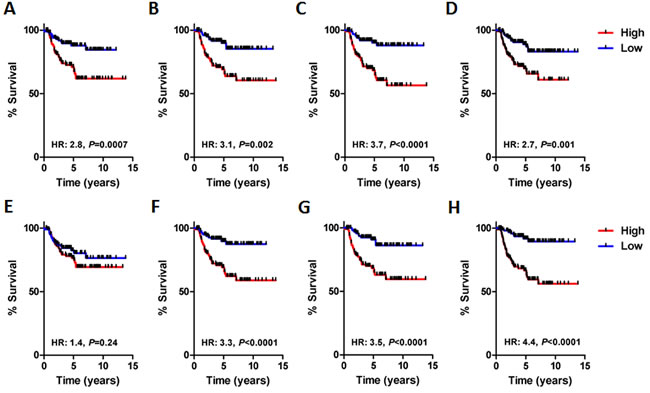Survival analysis of each BLBC network module in the validation cohort (