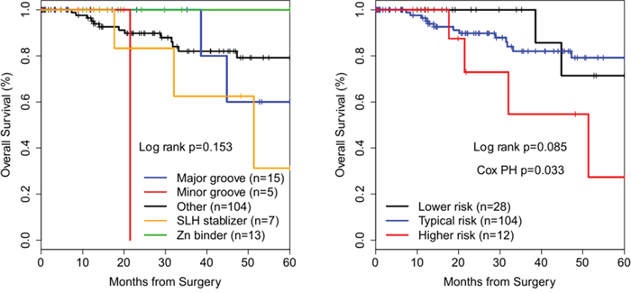 Kaplan-Meier survival curves of TP53 missense mutation structural groups in breast cancer.