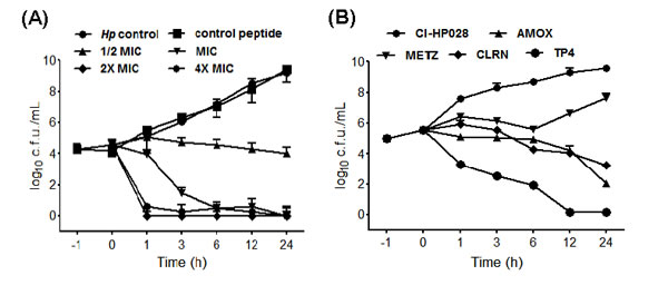 Dose- and time-dependent killing kinetics of TP4 against