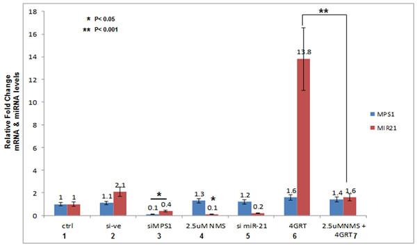 MPS1 modulates miR-21 expression.