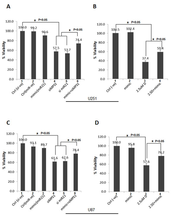 Ectopic miR-21 expression protects GBM cells from MPS1 inhibition induced cell death.
