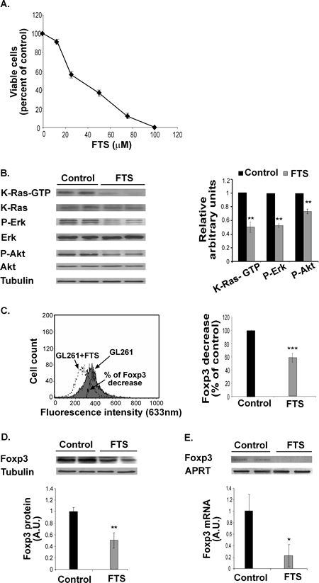 FTS inhibits GL261 cell proliferation and decreases K-Ras-GTP, P-Erk, P-Akt and Foxp3