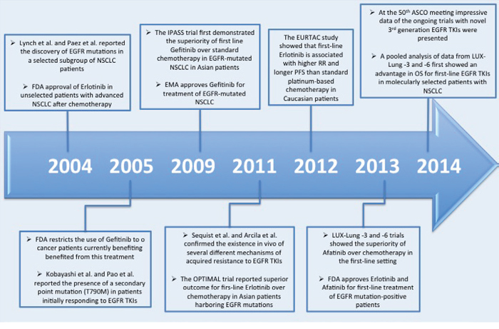 Timeline of the major progresses in the last decade in EGFR-mutated NSCLCs.