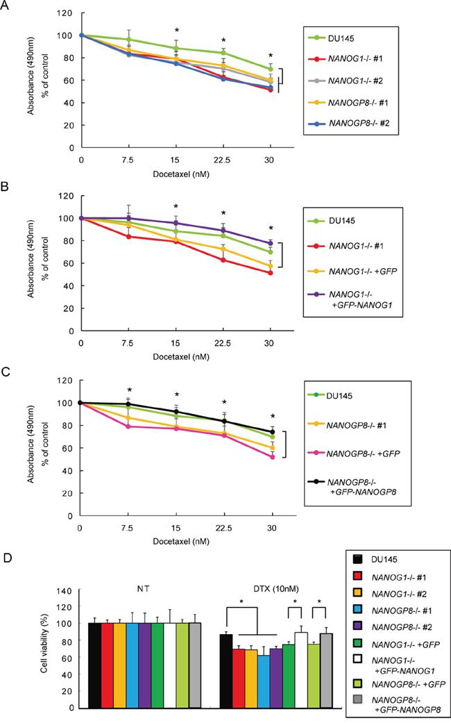 Knockout of NANOG1 and NANOGP8 increases sensitivity to docetaxel.