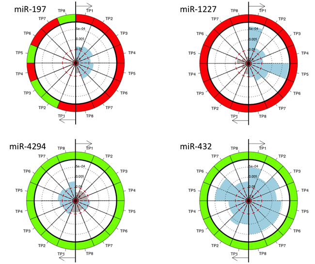 The pie charts for miRNAs significant in the comparison of non-cancer controls and the lung cancer samples collected at the different time points and for patients with and without metastases separately.